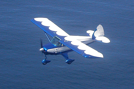 Blue flying over the ocean